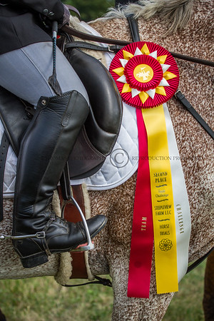 Minnesota Eventing Steepleview 2014