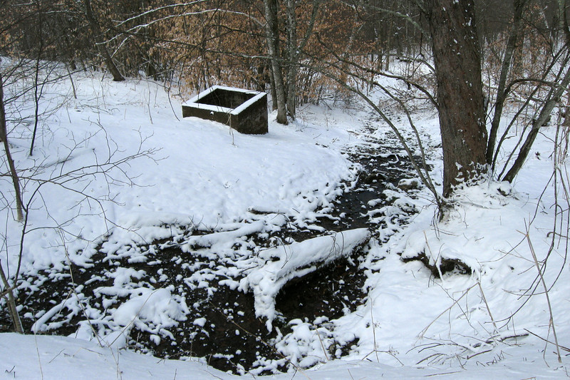 The snow wasn't quite heavy enough to cover this seeping spring...