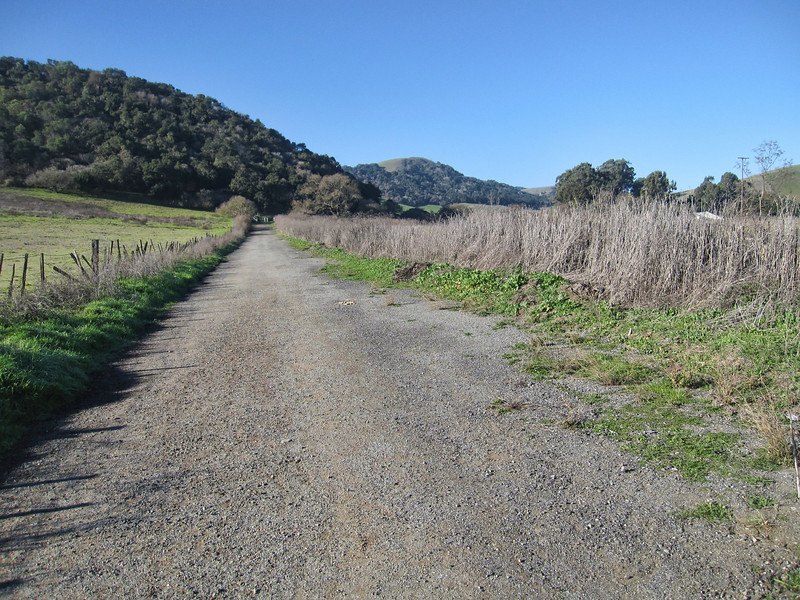de Anza Trail 1:18:2011 5.JPG