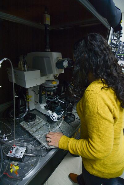 CNRM 2018 labs357.jpg