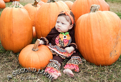 Ansley-Pumpkin Patch 2015