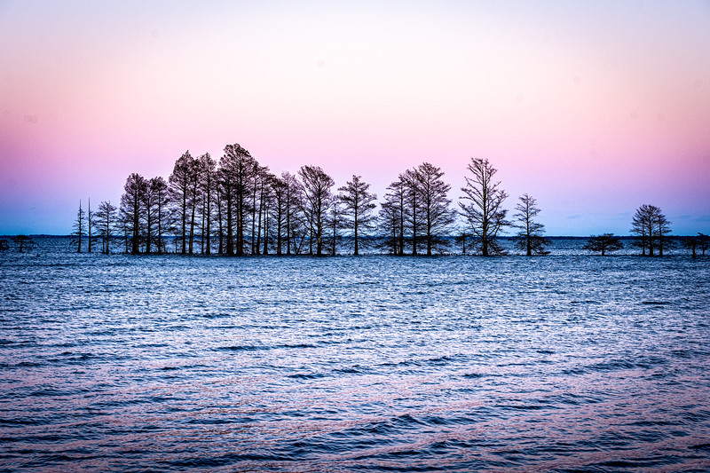 Lake-Mattamuskeet-104.jpg