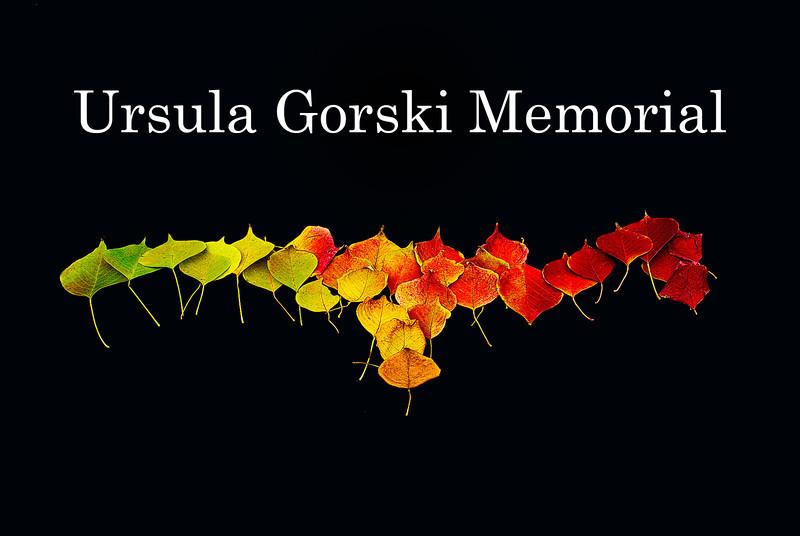 Memorial-title.jpg