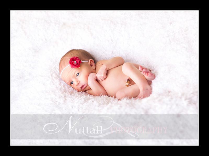 Olivia Newborn-109.jpg