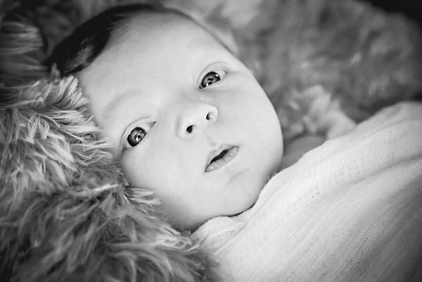 Baby Davie - Newborn
