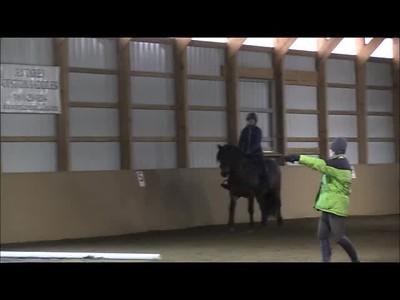 TSRC 2018-12-05 Milestone Sport Horses Video