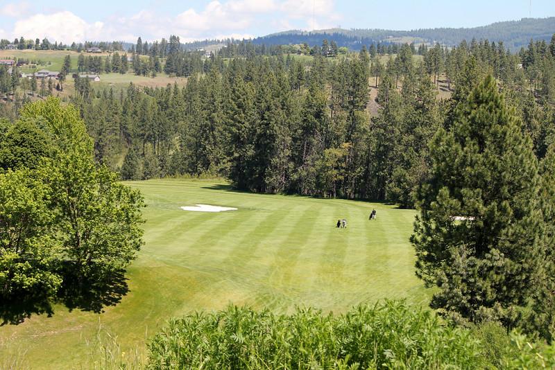 #5 Fairway, Hangman Valley GC,  Spokane, Wa ( 610 yrds from the whites)