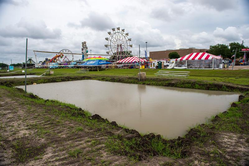 Strawberry Festival_2015_010.jpg