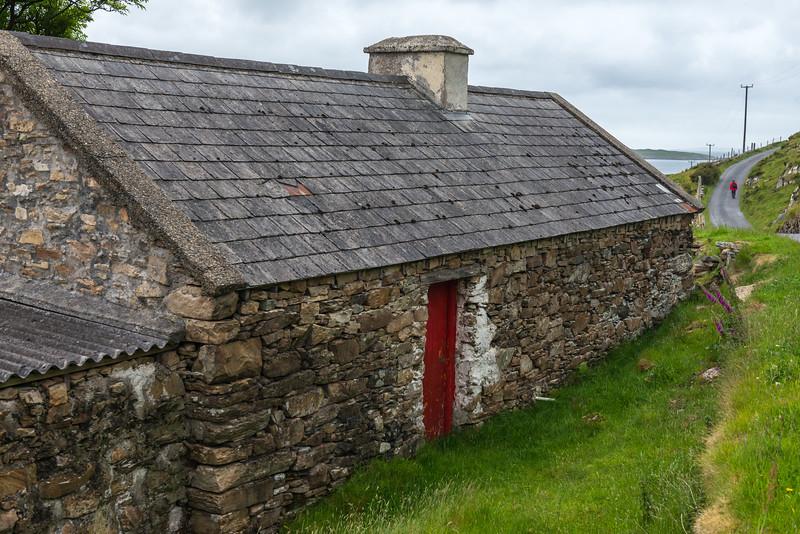 Connemara_D800-285.jpg