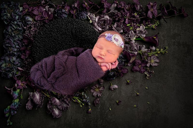 Josie Newborn Session 2019