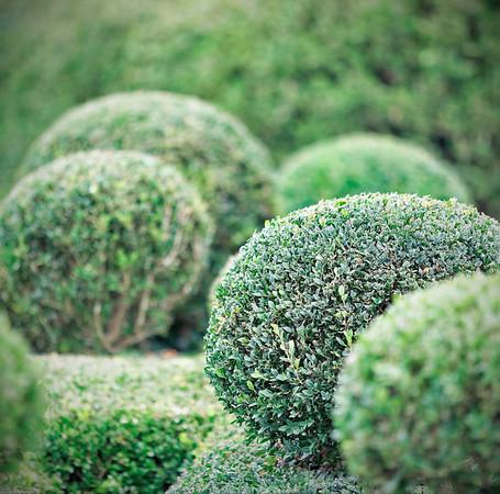 Les Jardins suspendus de Marqueyssac