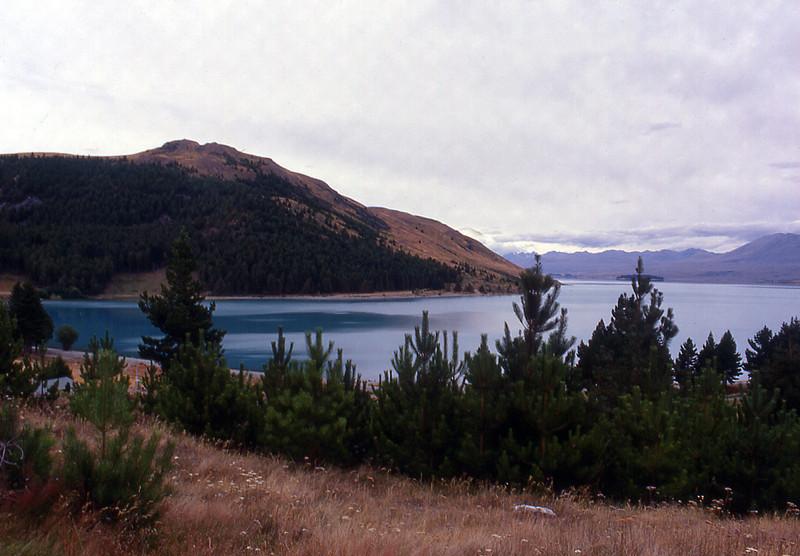 NZ_058.jpg