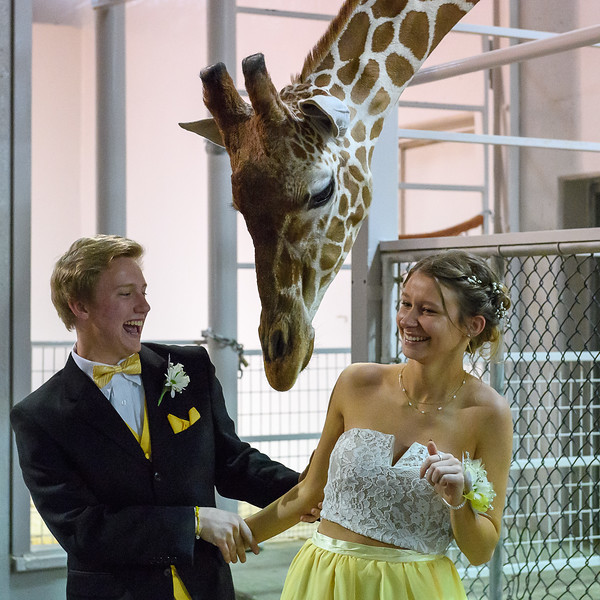 2018_KSMetz_April14_SHS PromNIKON D5_7974.jpg