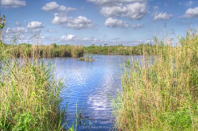 Florida Everglades Loxahatchee