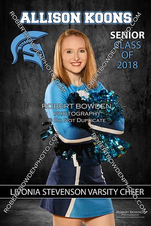 Livonia Stevenson Senior Team Photos 2017