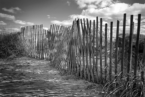 Beach Fence - $3