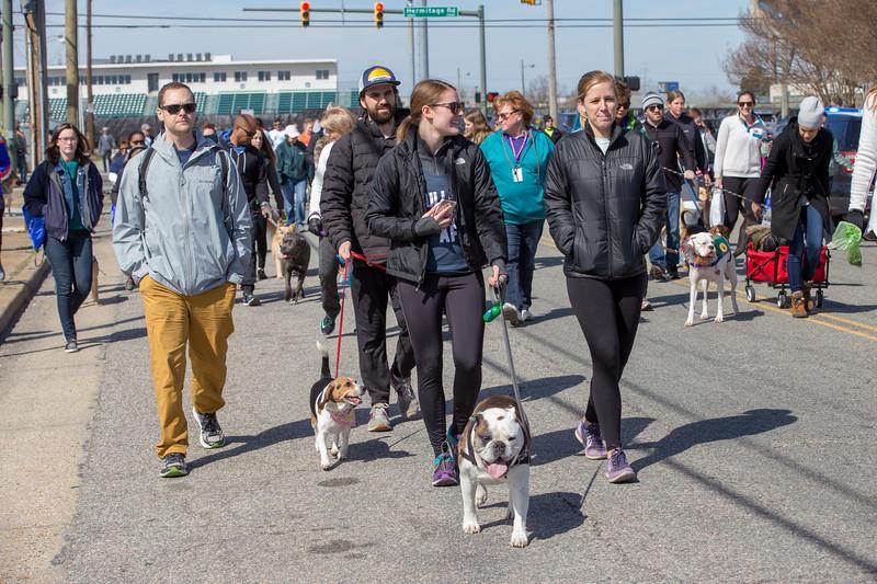 Richmond Spca Dog Jog 2018-793.jpg