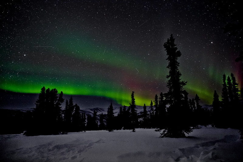 Aurora tours at Chena Hots Springs Resort outside Fairbanks, AK.