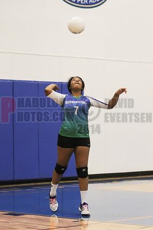 Girls JV Volleyball #7 - 2014