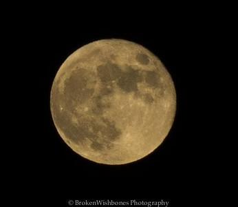 2014October 8 Blood Moon