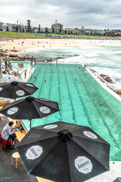 Coogee-Bondi Beach Walk