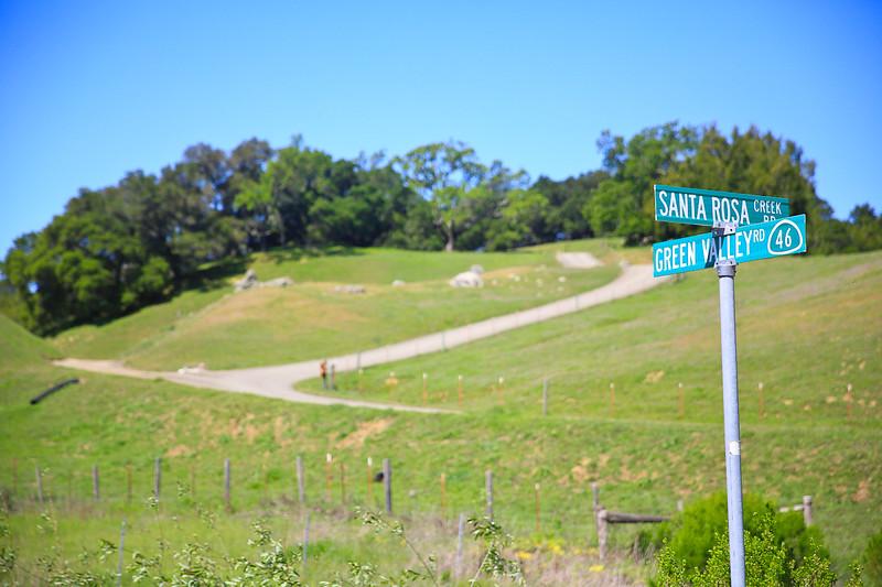 websize_Old Creek Road in Spring-0852.jpg