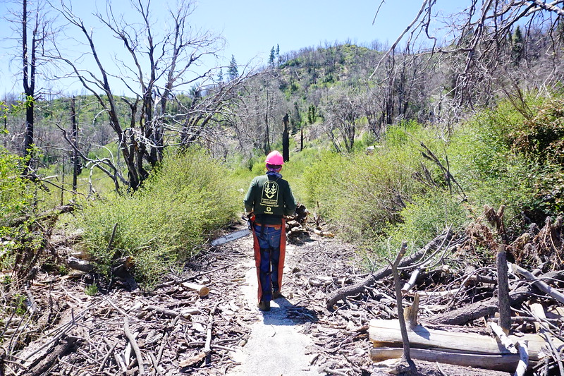 20170430003-Vetter Chainsaw Trailwork.JPG