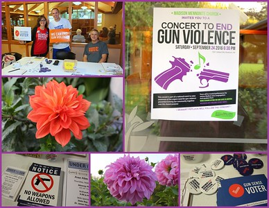 Concert Across America to End Gun Violence - Madison 09.24.2016