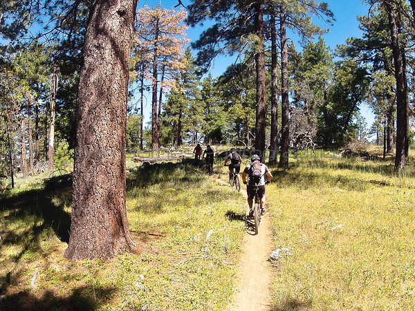 Big Laguna Trail 06/22/13