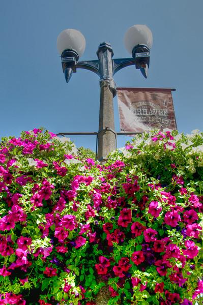 fairhaven-lamp-flowers.jpg