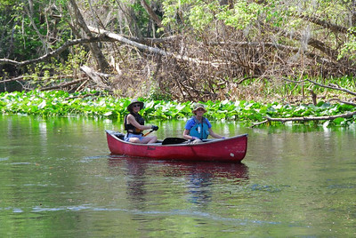 Canoe Trip 2011-Silver River FL