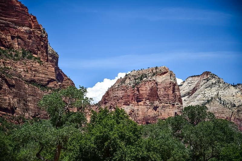 2019 Grand Canyon-36.jpg