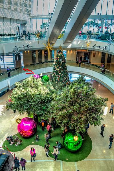 Hong Kong Dec 2014 - January 2013 (2 of 16).jpg