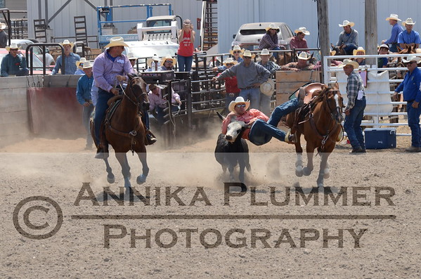 Steer Wrestling-WC Slack-07-08-2017