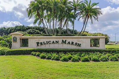 Pelican Marsh