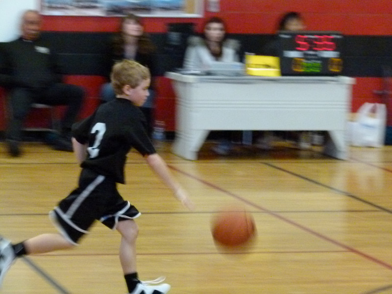 Heat Basketball 2013