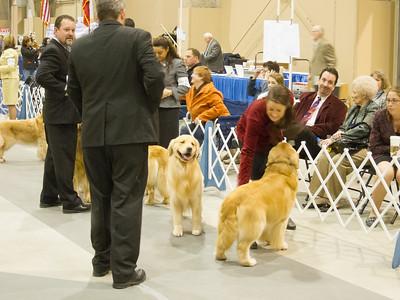 Alamo Cluster of Dog Shows - Mar 2012