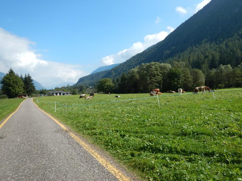 Colgolo-to-Caldes-Bike-Path-Ride.JPG