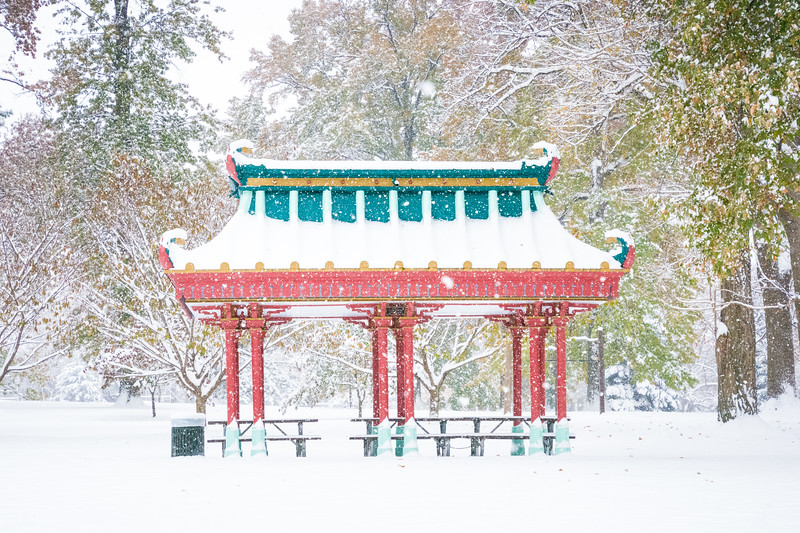 Chinese Pavilion in Tower Grove Park