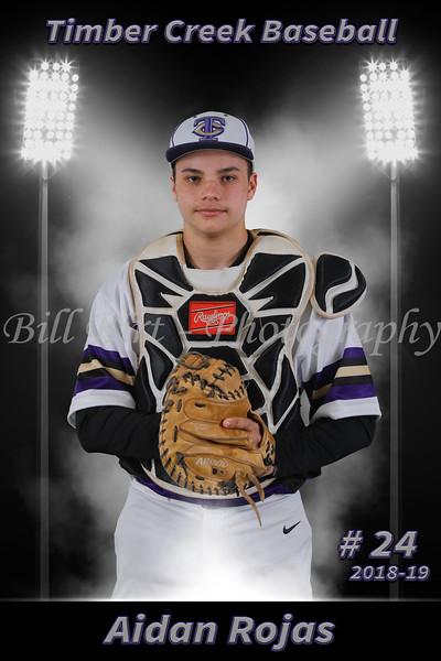 TCHS Baseball Banners 18-19
