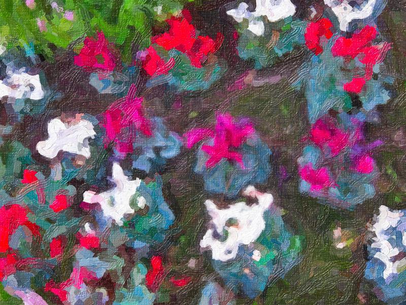 feb 3 - flower garden.jpg