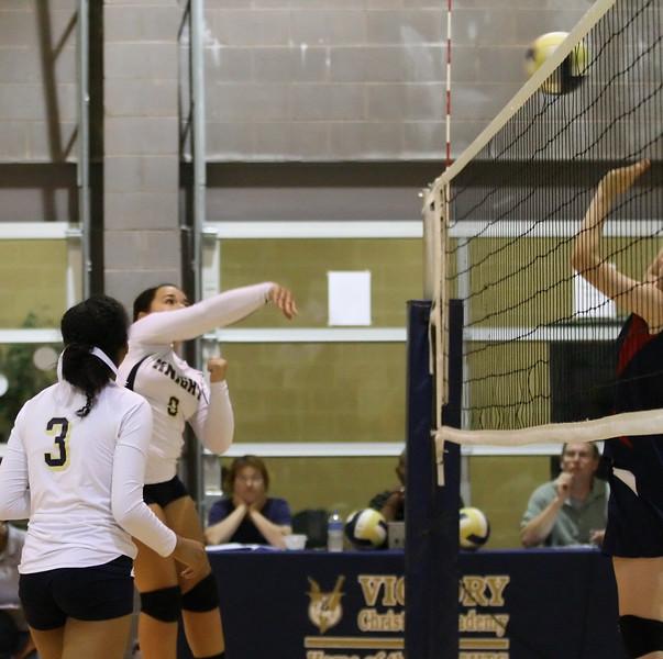 VCA-Volleyball-186.jpg