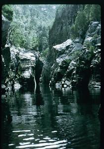1986 Wollengambi