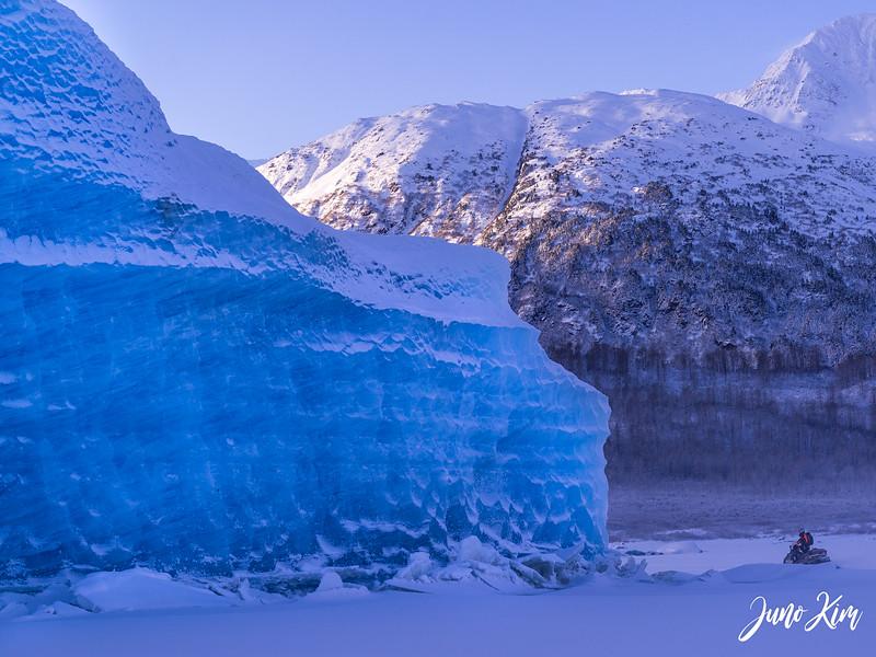 2020-01-17_Alaska Wild Guides-6102558-Juno Kim.jpg