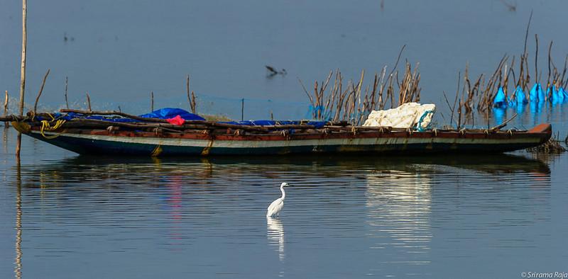 Nov-Dec 2013 Chennai