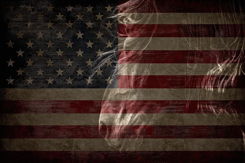 mustang-flag.jpg