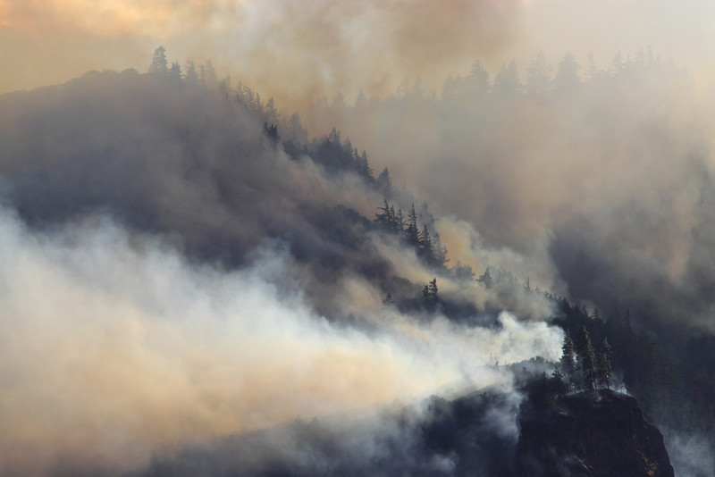 forest fire-11