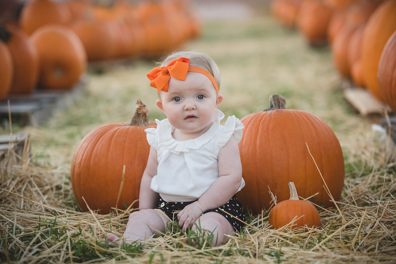 Smith-Pumpkin-2017-4.jpg