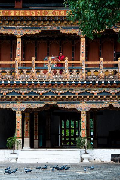 Bhutan-Punakha-8317.jpg