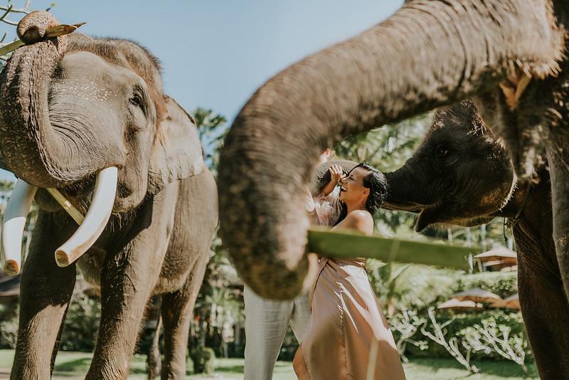 VTV_family_photoshoot_elephants_Bali_ (20).jpg